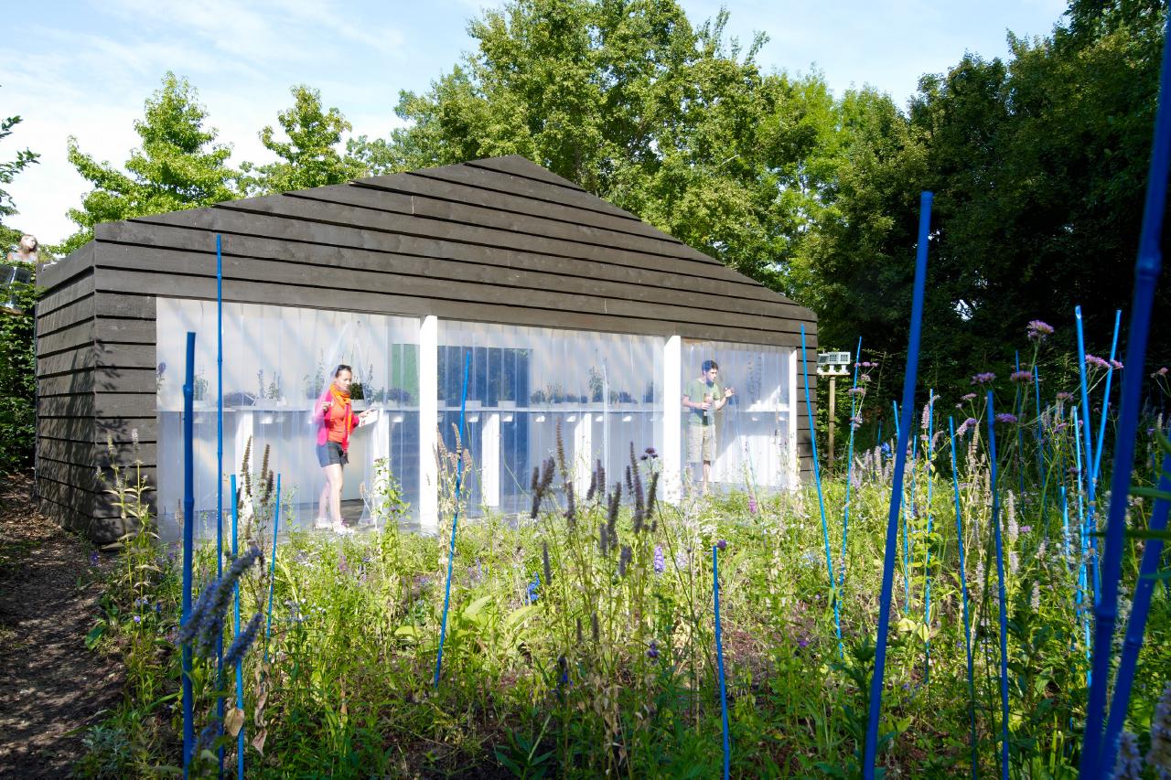 Festival Des Jardins Chaumont Sur Loire 2009 ceci n'est pas un monochrome | chaumont sur loire - kettinghuls